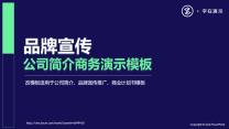 框架完整品牌宣传公司简介商务演讲汇报模版.pptx