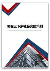 暑假三下乡社会实践策划.docx
