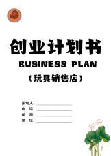 玩具销售店创业计划书.docx