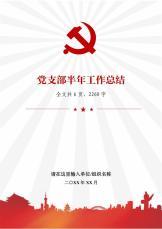党支部半年季度党建工作总结.docx