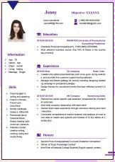 紫色时尚风销售通用英文简历.doc