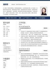 财务主管简洁风简历.docx