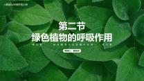 人教版生物七年级上册绿色植物的呼吸作用.pptx